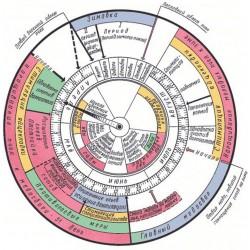 Календарь пчеловода