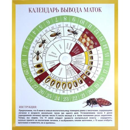 Календарь для вывода маток